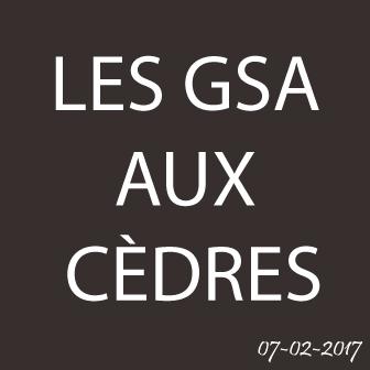 LA SORTIE DES GSA AUX CÈDRES