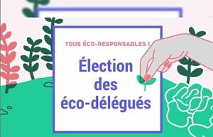 Election des délégués 2019-2020