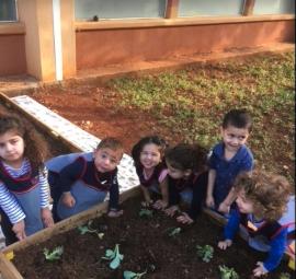 Le jardin potager des maternelles