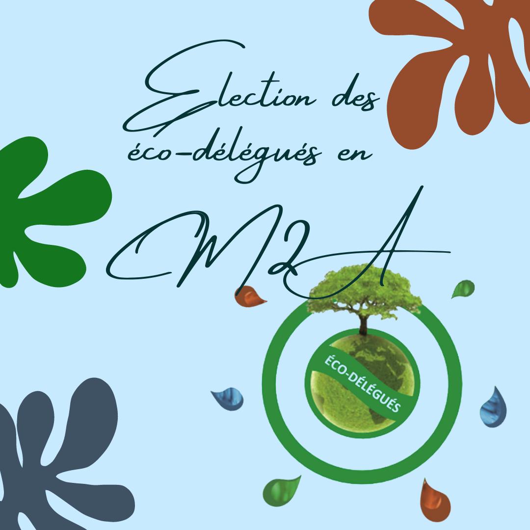 Election des éco-délégués en CM2 A
