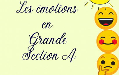 Les émotions vues par les GSA