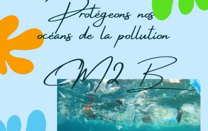 La pollution de la mer